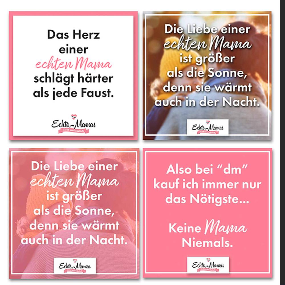 Portfolio LokalLemons Ansbach Werbeagentur - Social Media